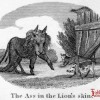 Thumbnail image for <center> In Spite of the Lion's Skin the Ass Betrays Himself by His Braying</center>